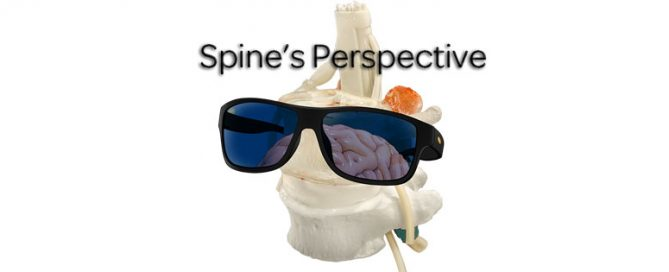 Spine perspective, education, mechanobiology