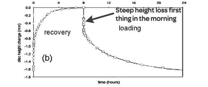 height loss, discs, morning stiffness