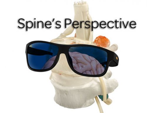 A Spine's Perspective – Top down Bias in Musculoskeletal Care